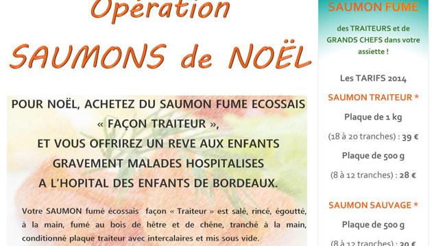 Affiche Operation Saumons de Noel ALADIN 2014